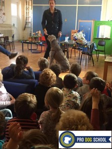 Talking to the preschoolers about dog care